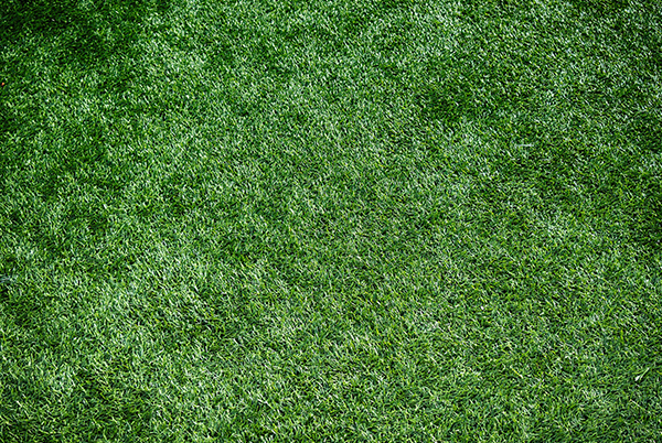 artificial grass layers Whitefield